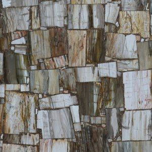 Petrity Wood Vein Cut ASP-Y011-2